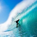 Занятие freedomDANCE «На гребне волны…»