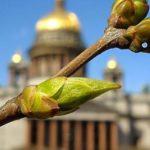 Занятие freedomDANCE «Джаз. Любовь. Новый уровень» в Санкт-Петербурге.